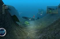 Reef Shot 9