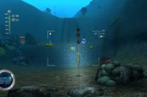 Reef Shot 1