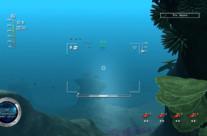 Reef Shot 6
